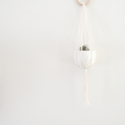 Natural cotton plant hanger with felt pod - 50cm
