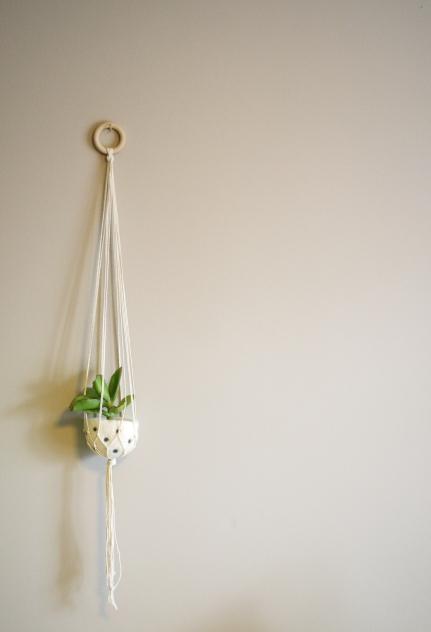 Natural cotton plant hanger with polka dot felt pod - 100cm