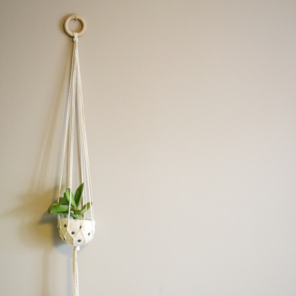 Natural cotton plant hanger with polka dot felt pod - 100cm